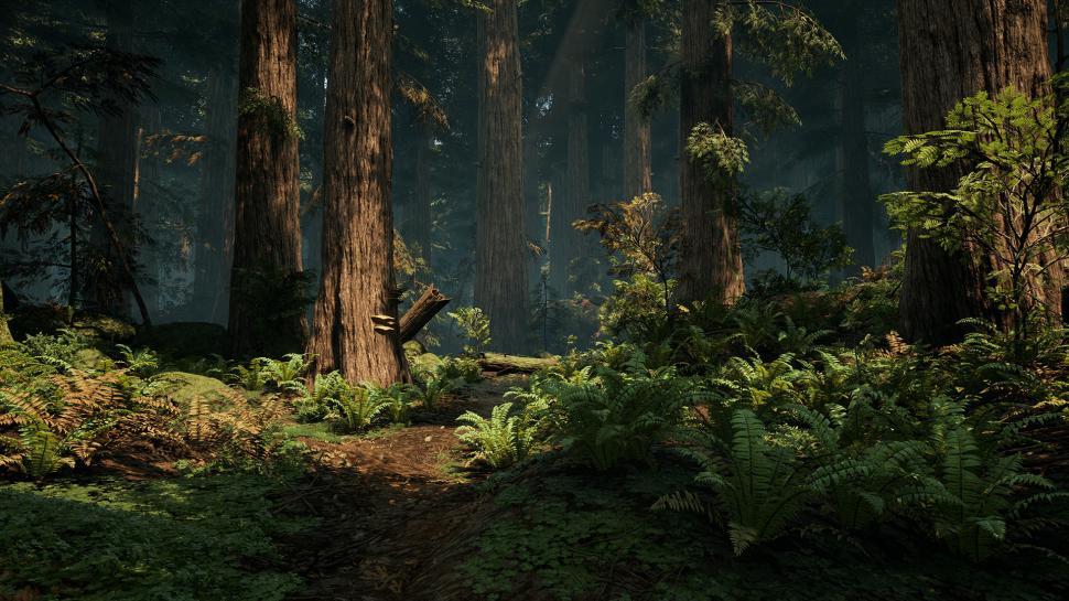Desktop Wallpapers 3d Graphics Amazon Forest Unreal Engine 4 Dice Entwickler Erstellt Waldlandschaft