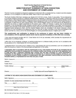 Fillable Online scchildcare DSS Form 2925 (APR 09).qxd ...