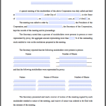 Stockholders Special Meeting Minutes Form