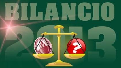 PD Verona: bilancio 2013