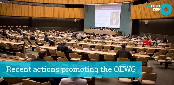 Call to Contribute Ideas/Curricula & Report of Recent Actions Supporting the UN Open Ended Working Group on Nuclear Disarmament