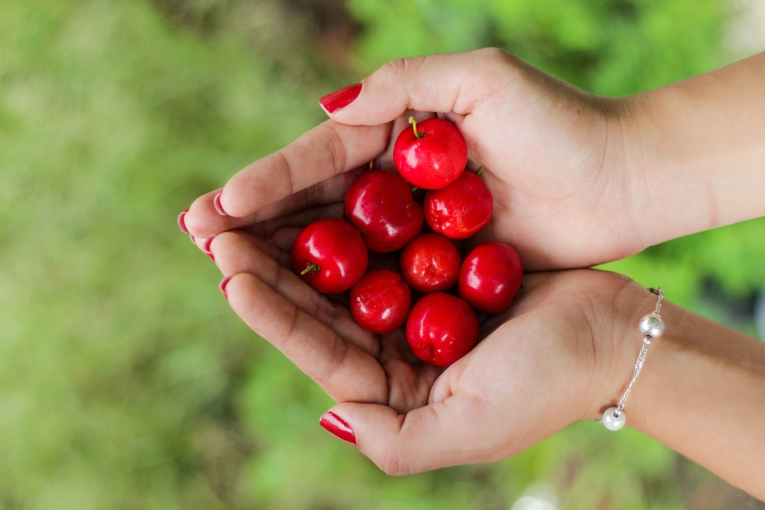 5 Vegan Nutrition Tips for Healthy Nails Peaceful Dumpling