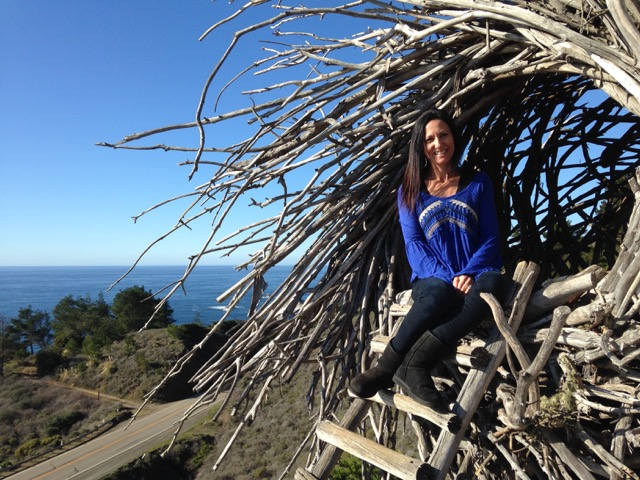 Misty Mountain Hop Big Sur Peace Love And Gardening