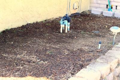 Gardening Plot