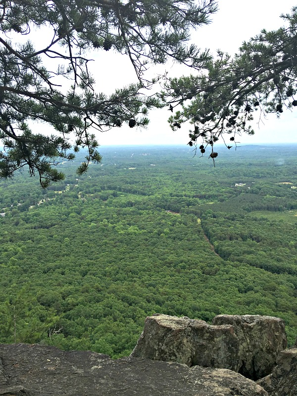 The view from Crowders Mountain