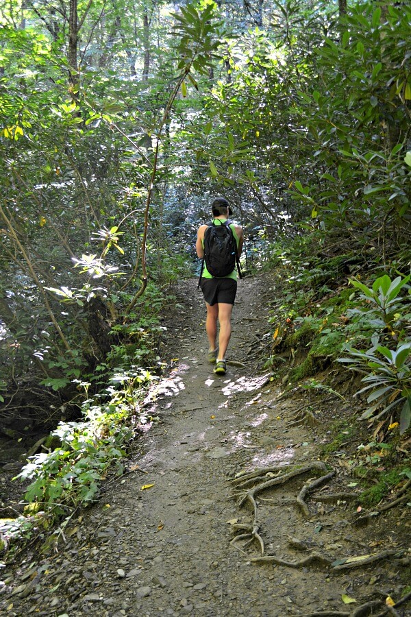 Hiking the Profile Trail on Grandfather Mountain