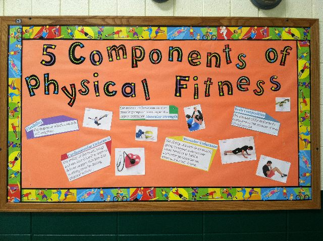 PEC Bulletin Boards for Physical Education - components of fitness