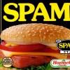 Blog spam