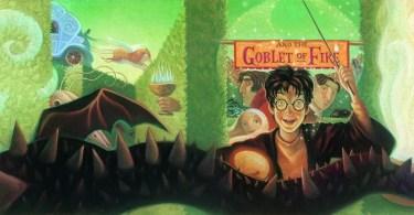 Harry Potter pode ensinar sobre o respeito às diferenças?
