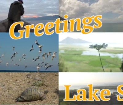 Greetings from Lake Skadar: Meet the Balkans' Largest Lake