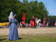 Les chevaliers rhônalpins