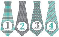 Blue Gray Ties Monthly Baby Stickers (Months 1-12)