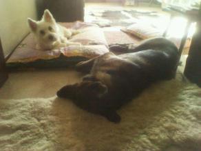 Livio (ora Morgan) e la sua amica Margot