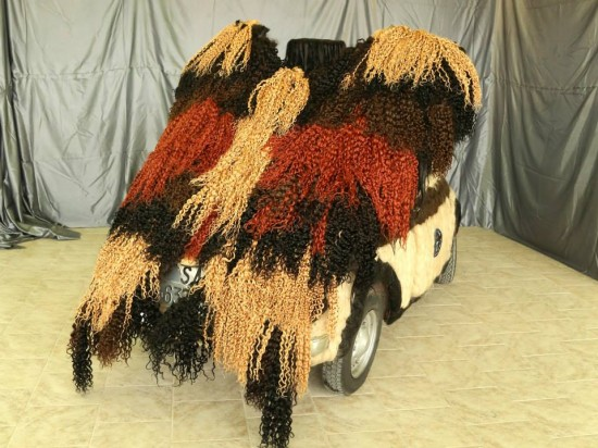 car-covered-in-hair2-550x412