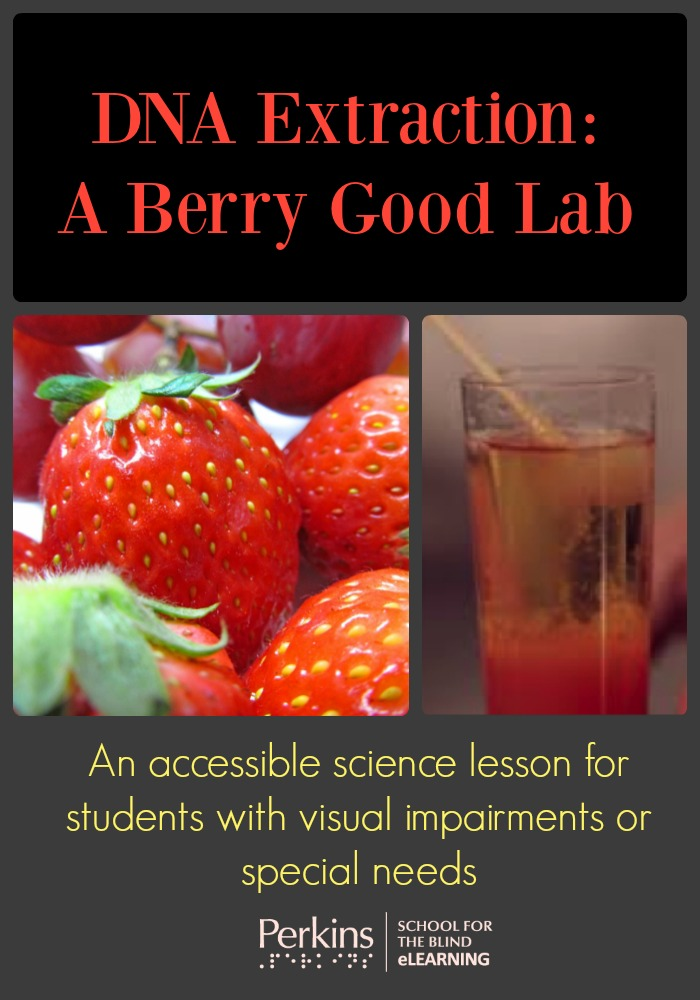 DNA Extraction A Berry Good Lab Perkins eLearning