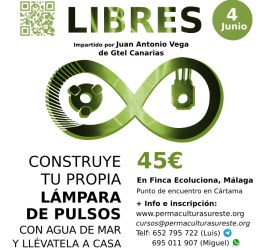7-Taller-Dispositivos-Energias-Libres-Ecoluciona-4-Junio