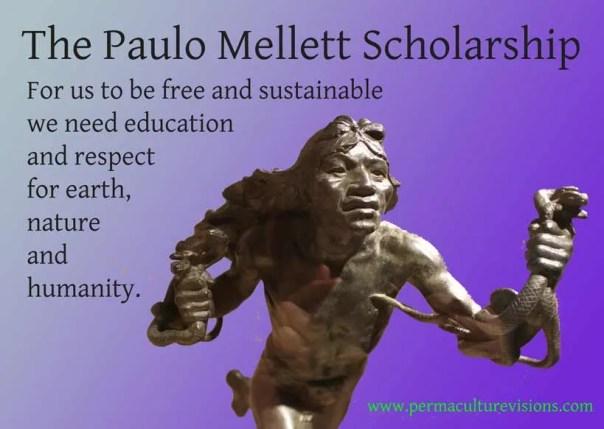 paulo-mellet-scholarship