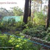 gentle swales in garden at EarthKeepers, Buxton NSW