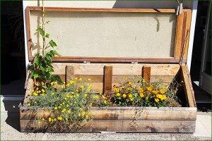 micro jardin 7