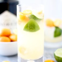 Kumquat, Orange, and Lime Coolers