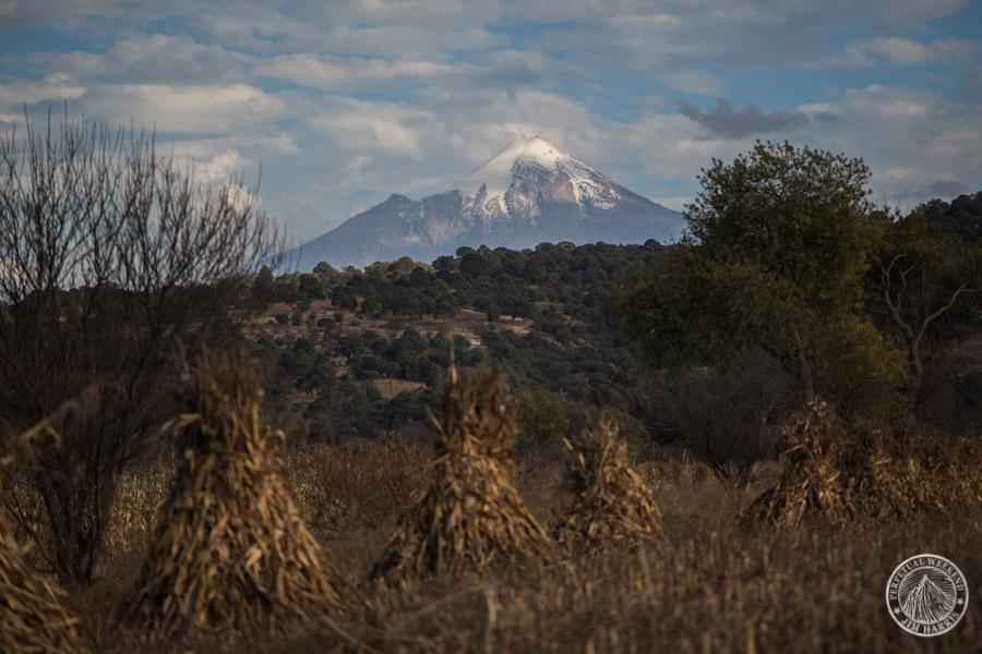 Pico de Orizaba beyond the corn