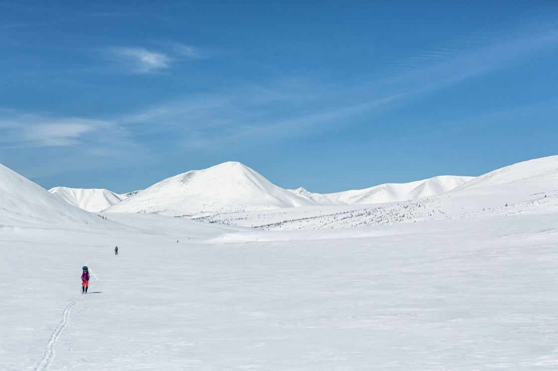 Rebecca Watters, Forrest McCarthy, Jason Wilmot and Gregg Treinish ski across White Pasture