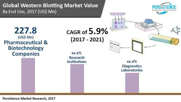 Western Blotting Market - Global Trends, Growth  Forecast to 2021