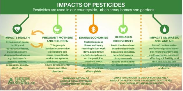 Is Chemical Pest Control Really an Answer? - Pestrol Australia