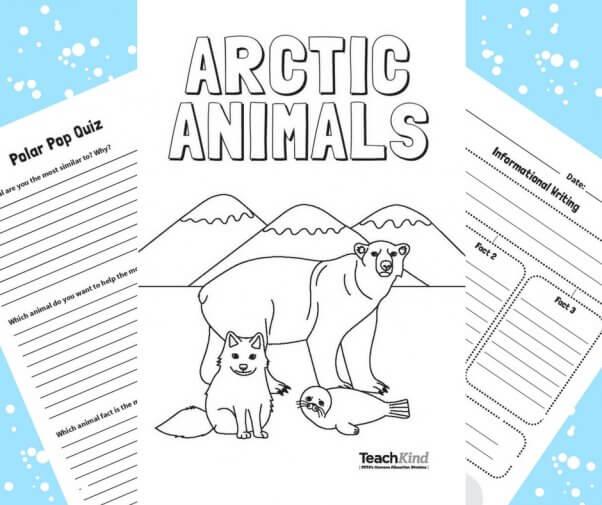 Amazing \u0027Arctic Animals\u0027 Printable Mini Book and Activity PETA