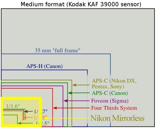 Nikon Pro Mirrorless Camera May Have a Paltry 2.6x Crop Factor Sensor sensors