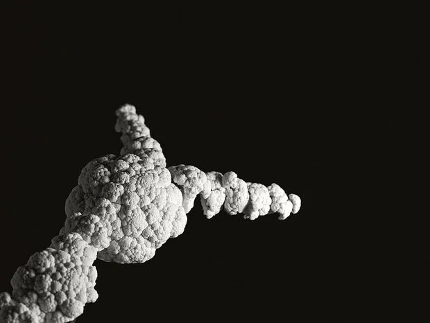 Famous Explosion Photos Recreated with Cauliflower challenger1 mini