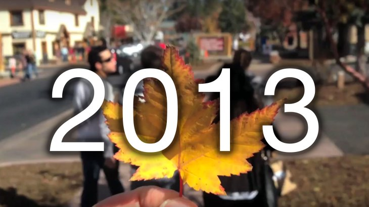 1se-2013-leaf-pic