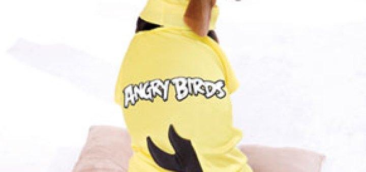 Angry Birds Yellow Dog