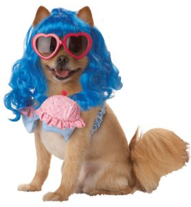 katy-perry-dog-costume