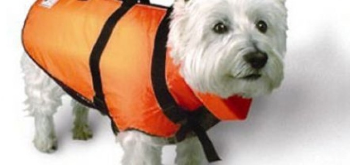 Fido Float Life Jacket