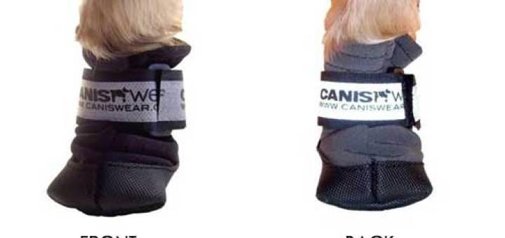 caniswear