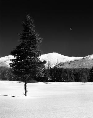 Mount Washingtone, Bretton Woods, NH