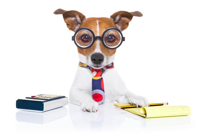 Cute Notepad Wallpaper Petsmart Will Buy Online Pet Food Retailer Chewy