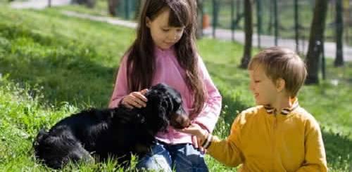 petrede-menina-menino-cachorro