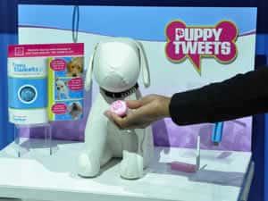 petrede-puppy-tweets