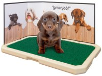 House Training & Cleanup | Pet Loo | Pee Pads