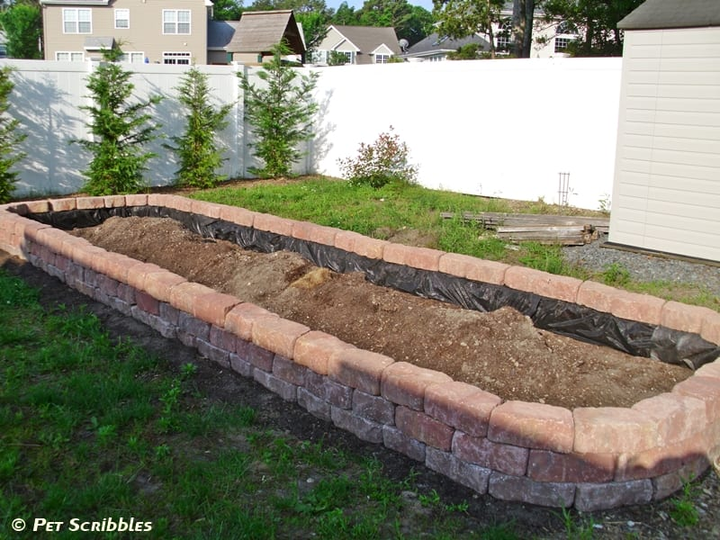 How To Build A Raised Garden Bed For Vegetables Pet