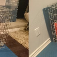 T-2 Days: MacGyvering a crate fit for puppy