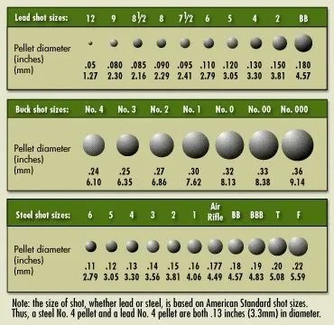 Bullets Sizes, Calibers, and Types Definitive Guide - Pew Pew