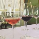 Espressioni di Teroldego Rotaliano vinodolomiti vinodolimiti   luxury winehellip