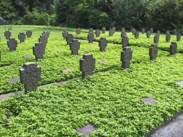 Dickmannchen Pflanzabstand Pflanzen Fur Nassen Boden