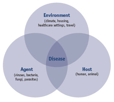 Triad of disease Epidemiology DB 3 Pinterest - research paper proposal template