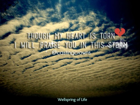 praise you in storm