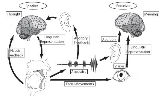 hearing diagram production