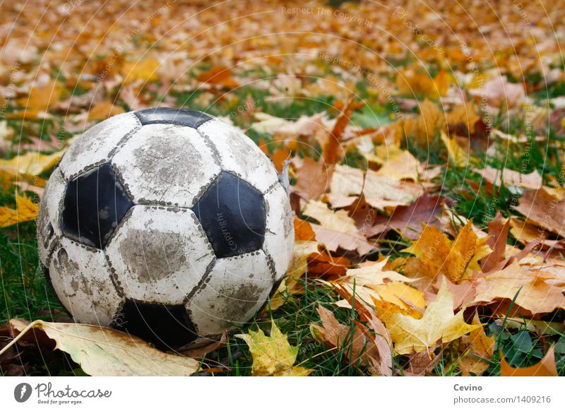 3d Action Wallpaper Hd Blue Soccer Ball Leather A Royalty Free Stock Photo From